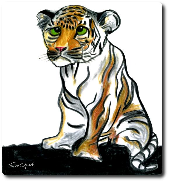 Petit tigre_p