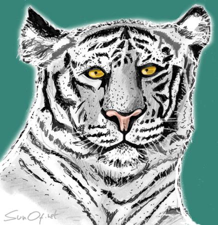 Le Tigre Blanc_SunOf.net