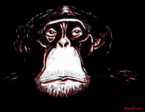 chimpanzee_sunof-net