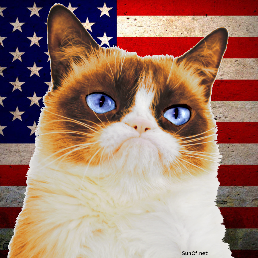 grumpy-trumpy-cat